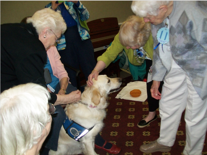 Retires visit with therapy dog