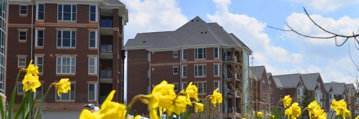 Outside view of apartment buildings with blooming flowers