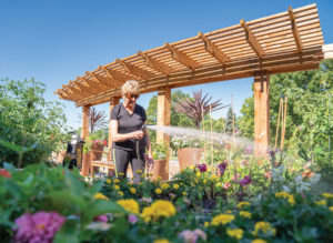 gardening reduces stress for emotional wellness