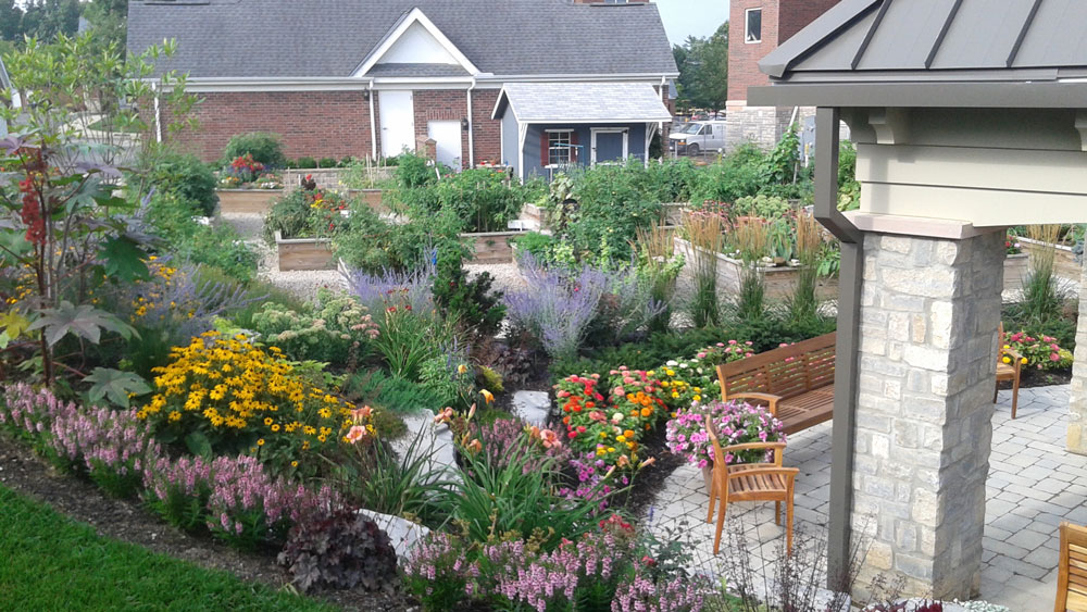 diverse plantings support environmental wellness
