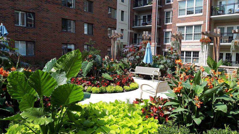 A beautiful courtyard view enhances environmental wellness
